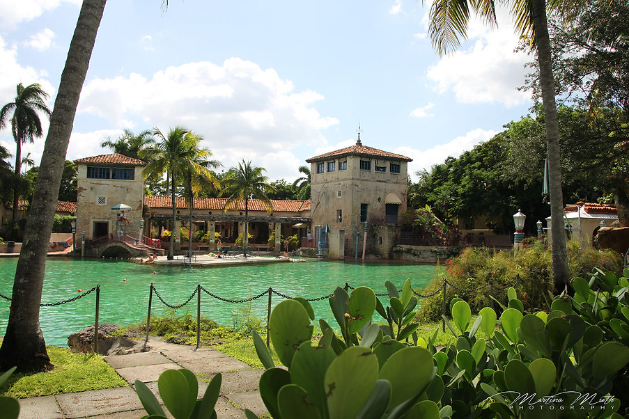 Venetian Pool Coral Cables