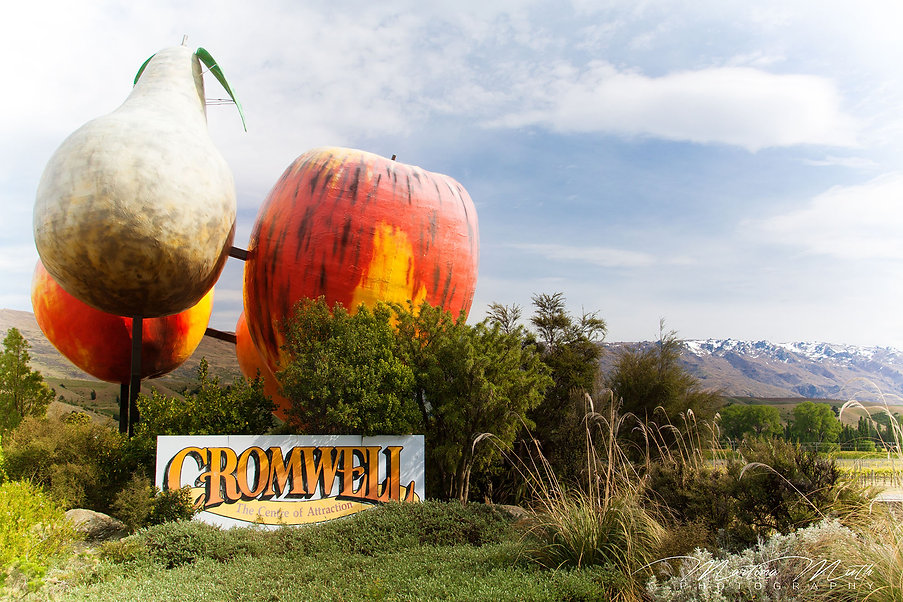 Big Fruit Collection in Cromwell