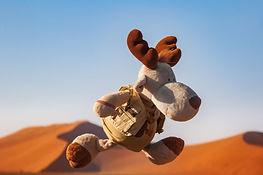Namibia 7DII 0084.jpg