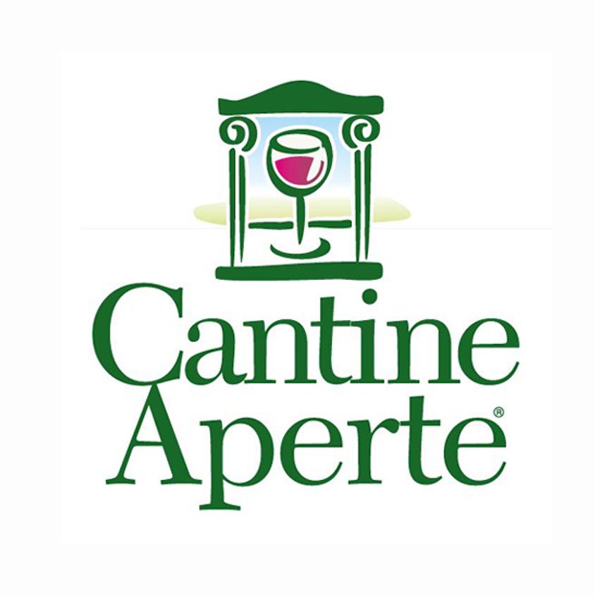 """27° Edizione """"Cantine Aperte"""""""