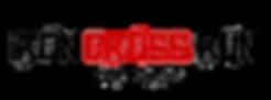Scritta logo iron.png