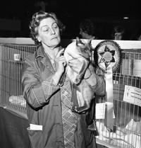 The Siamese Cat Society, April 1975