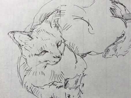 幻猫綺譚 にむけて   下地作りから下書きまで。