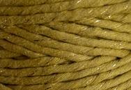 Kiwi - Golden