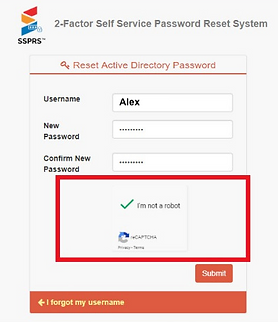 SSPRS_Password_edited.png