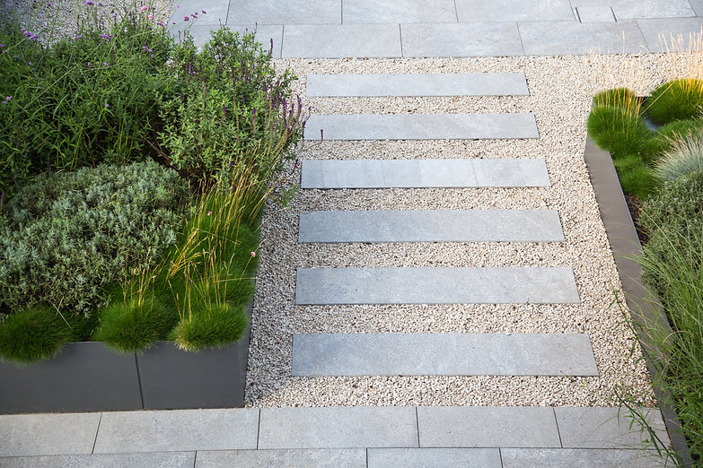 Garden and terrace design with a modern