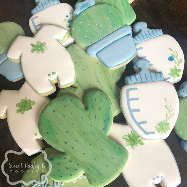A sweet succulent baby shower to match t