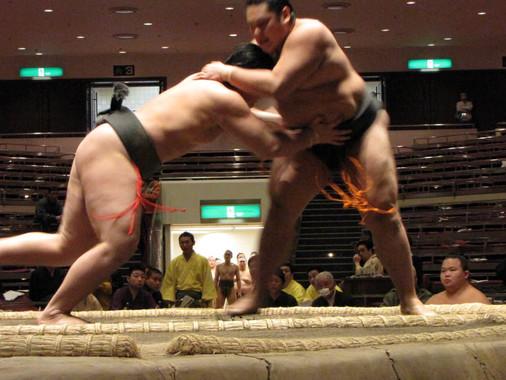 מתאבק Sumo (סומו) - לא מה שחשבתם