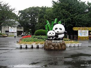 Ueno Zoo.jpeg