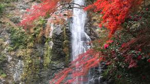 Minoh  פנינת טבע צפונית באוסקה