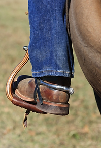 Boot and Spur