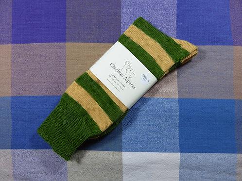 Moss Green/Corn
