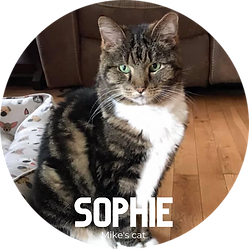 Sophie.png