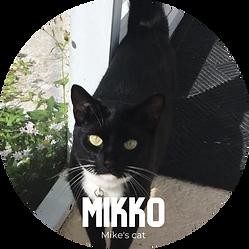 Mikko.png