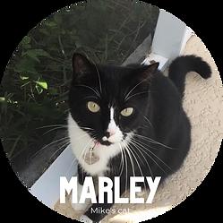 Marley.png