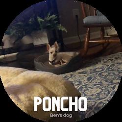 Poncho.png