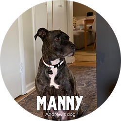 Manny.png