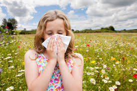 HAY FEVER & HOMEOPATHY
