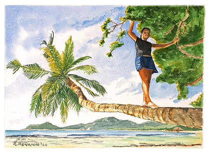 """""""Balacing on the coconut tree"""" Watercolor by Roland Henrion"""