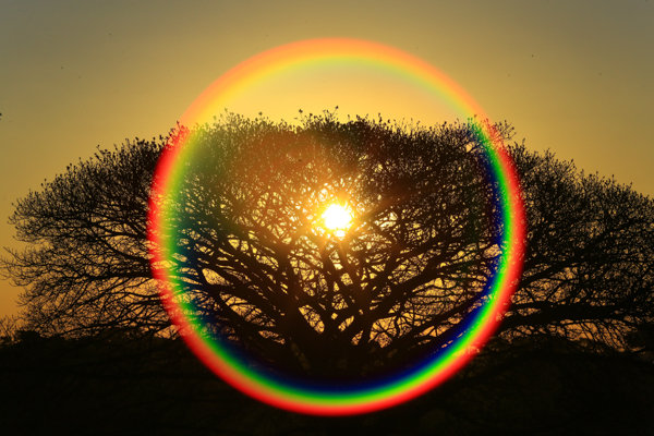 Em direção ao sol