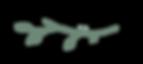 MWR-Olive-Branch_half2.png