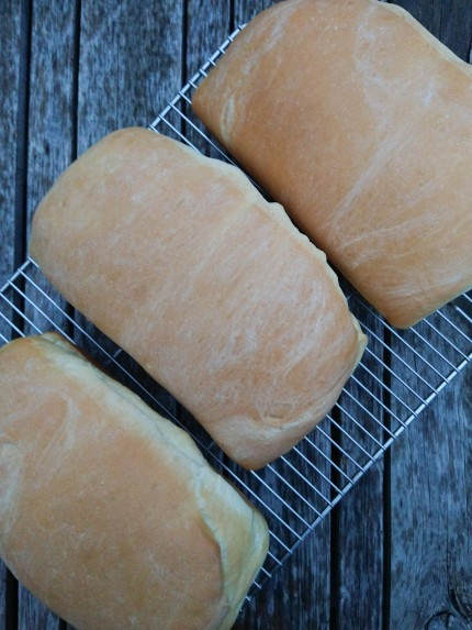 This is an image of three rectangular loaves of white butter topped bread cooling on a wire metal rack.