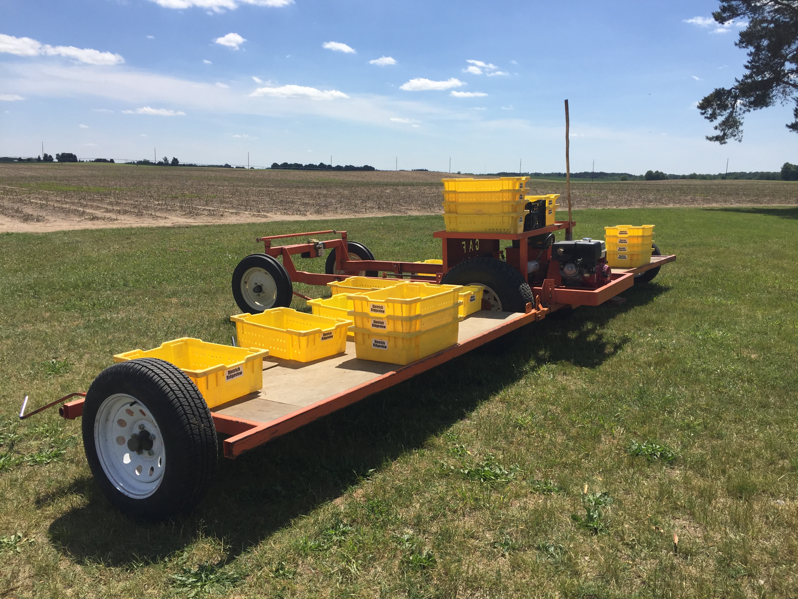 Asparagus tractor