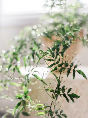 Summerour Studio Wedding | Atlanta, GA