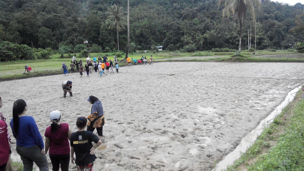 Sabah Sarawak 7 Nov 2014