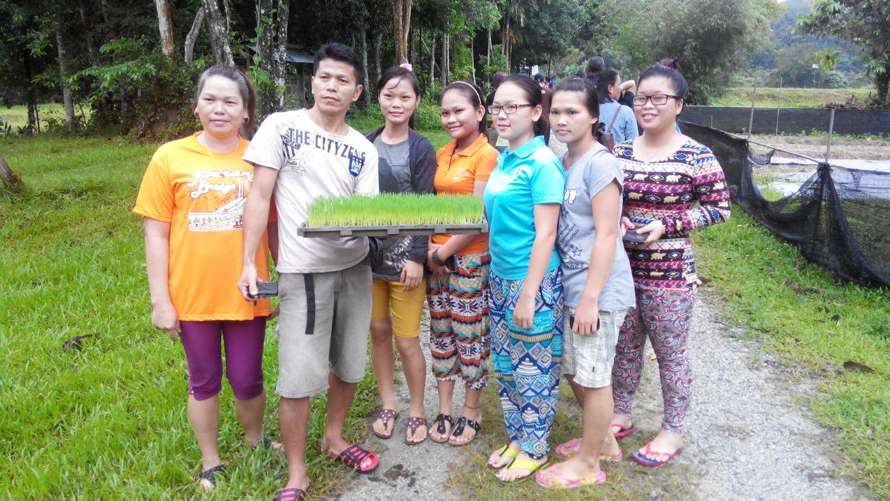 Sabah Sarawak SRI Training  7 Nov 14