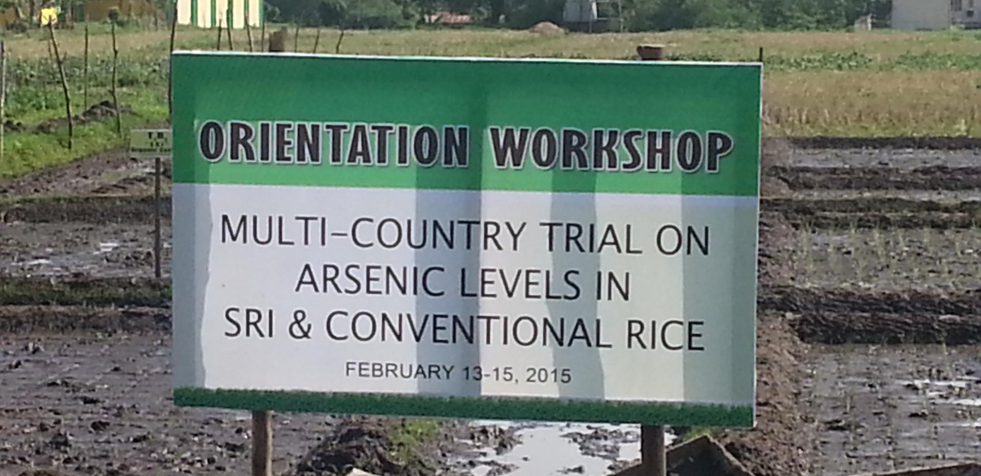 Multi-country arsenic workshop.jpg