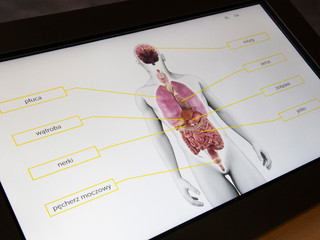 Eksponaty interaktywne / Interactive exhibits