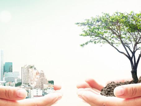 Grüne & Nachhaltige Hotels & Gastronomie? Lügen wir uns nicht selbst in die Tasche?