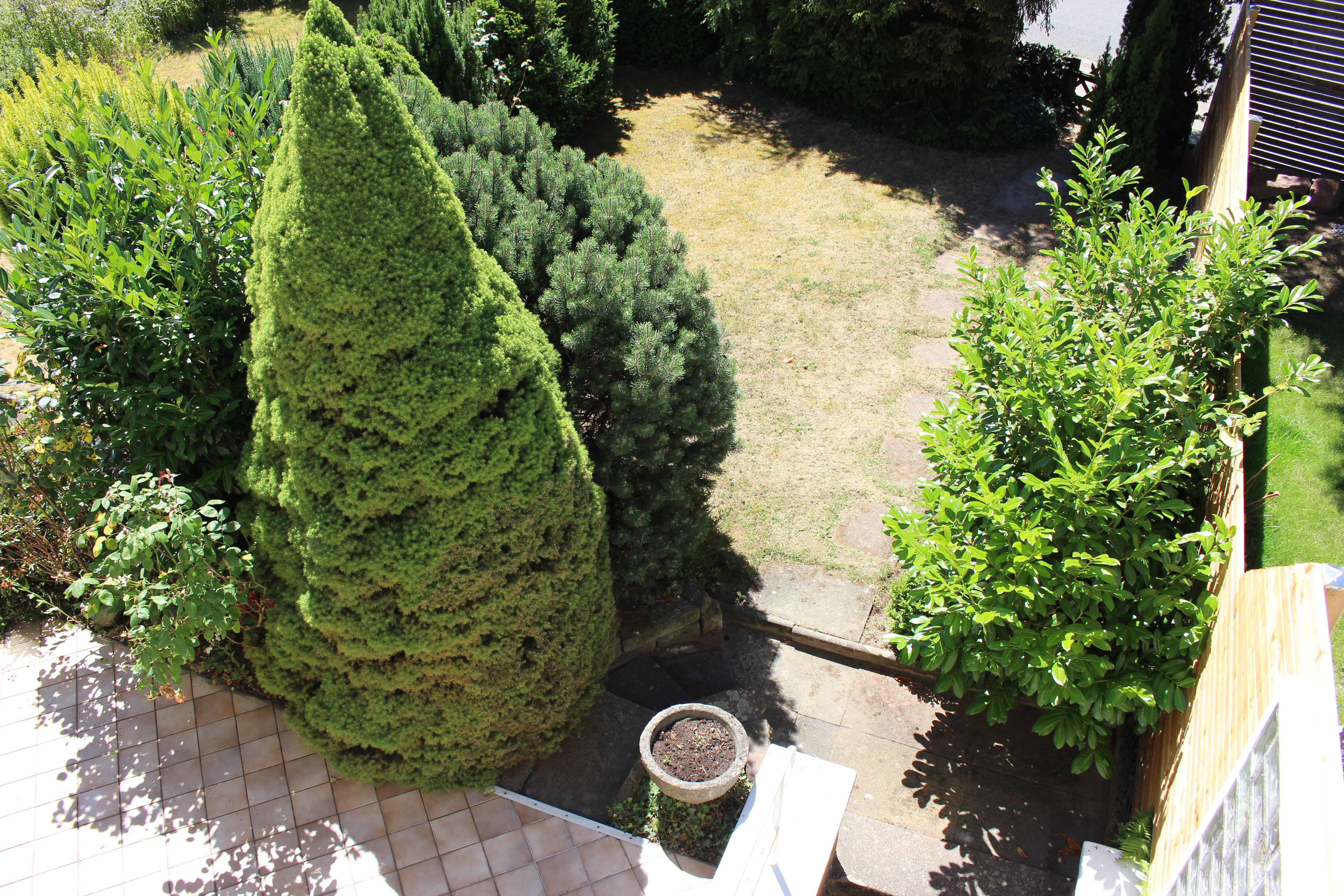 06_Garten