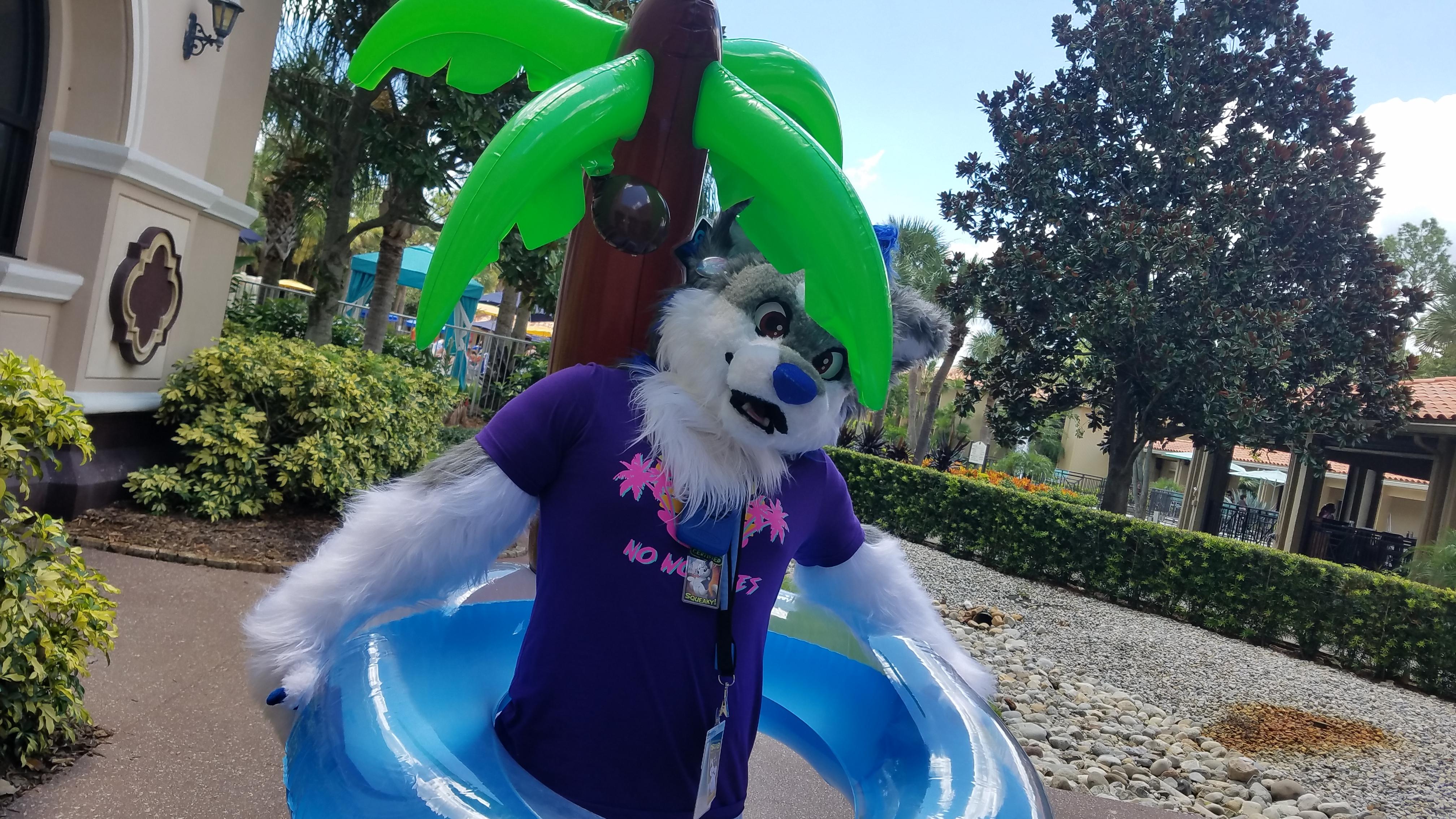 Treble Husky