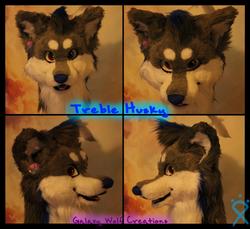 Treble husky head