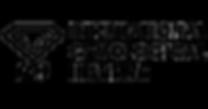 igi-logo-full.png