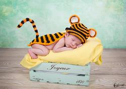 Eva Garrido fotografía bebés