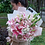 Thumbnail: (PO in D-3) Bunch of Lilies