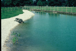 HIGHGROVE POND 1992