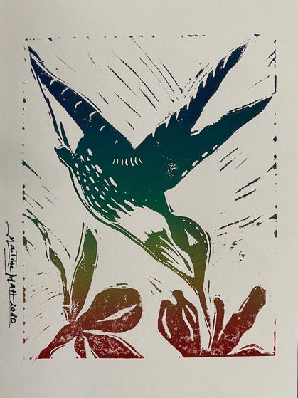 Hummingbird in Color