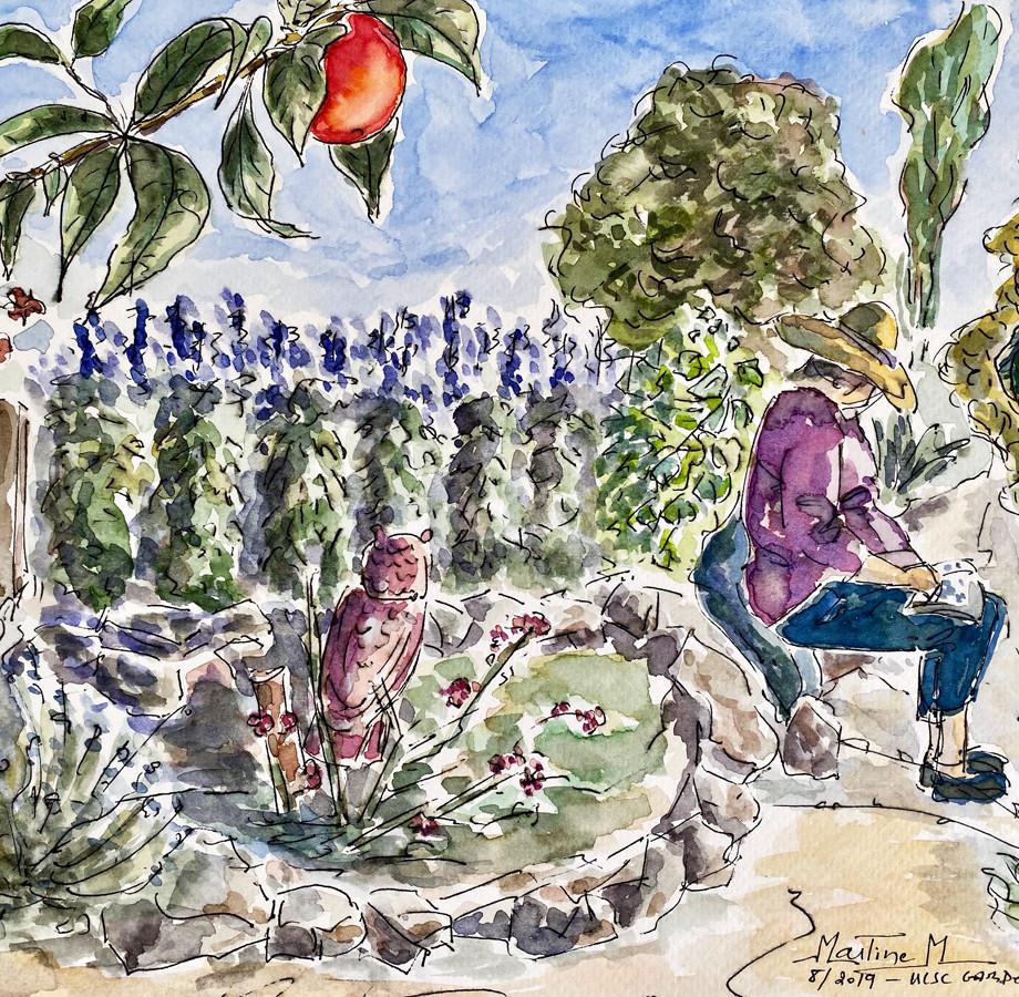 At UCSC Garden
