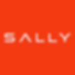 drive_sally_logo.png