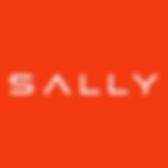 drive_sally_logo.png