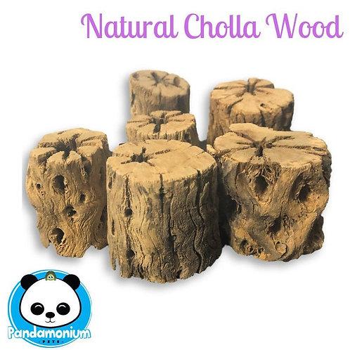 Natural Cholla Wood