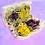 Thumbnail: Critter Subs