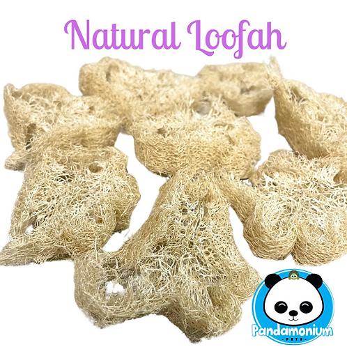 Natural Loofah