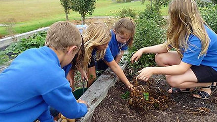 Students Learning Horticulture