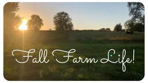 Fall Farm Life