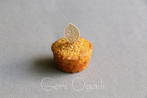 Gers Ogaili